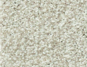 Shaw-Carpet-Wild-Extract-Porcelain