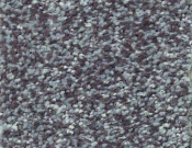 Shaw-Carpet-Wild-Extract-Storm