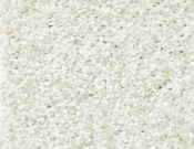 Shaw-Carpet-Wild-Extract-Twinkle
