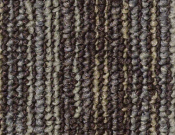 Shaw- Carpet- Philadelphia- Wired- Charged