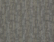 Shaw- Carpet- Philadelphia- Wired- Connected