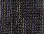 Shaw- Carpet- Philadelphia- Wired- Magnetize