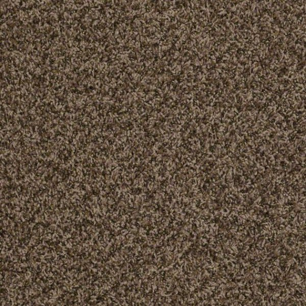Wish List By Shaw Philadelphia Carpets In Dalton