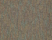 Shaw- Carpet- Philadelphia- Zest- Full of life