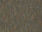 Shaw- Carpet- Philadelphia- Zest- Gleeful