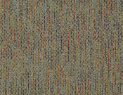 Shaw- Carpet- Philadelphia- Zest- Jubilant