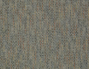 Shaw- Carpet- Philadelphia- Zest- Lively