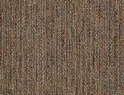 Shaw- Carpet- Philadelphia- Zest- Spice
