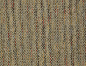 Shaw- Carpet- Philadelphia- Zest- Vibrant