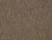 Shaw- Carpet- Philadelphia- Zing- Blissful