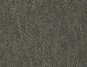 Shaw- Carpet- Philadelphia- Zing- Cheerful