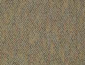 Shaw- Carpet- Philadelphia- Zing- Pizazz