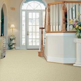 Shag and Frieze Carpet