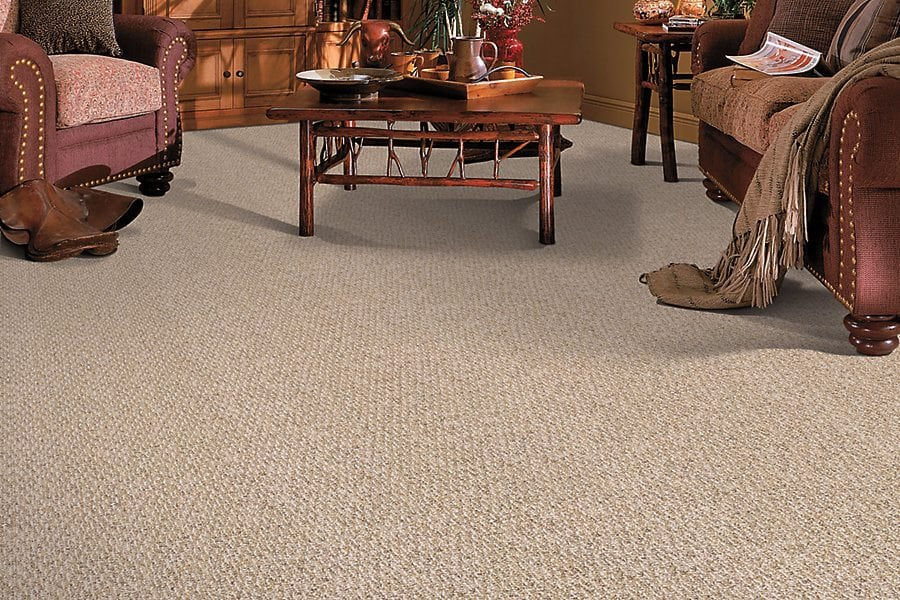 Loop Pile or Berber Carpet