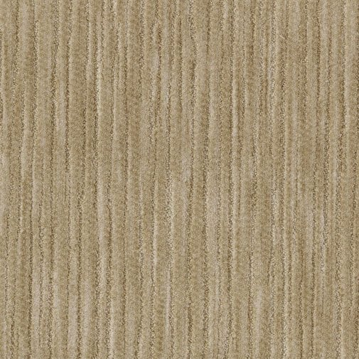 Buy Threads By Milliken Cut Amp Loop Broadloom