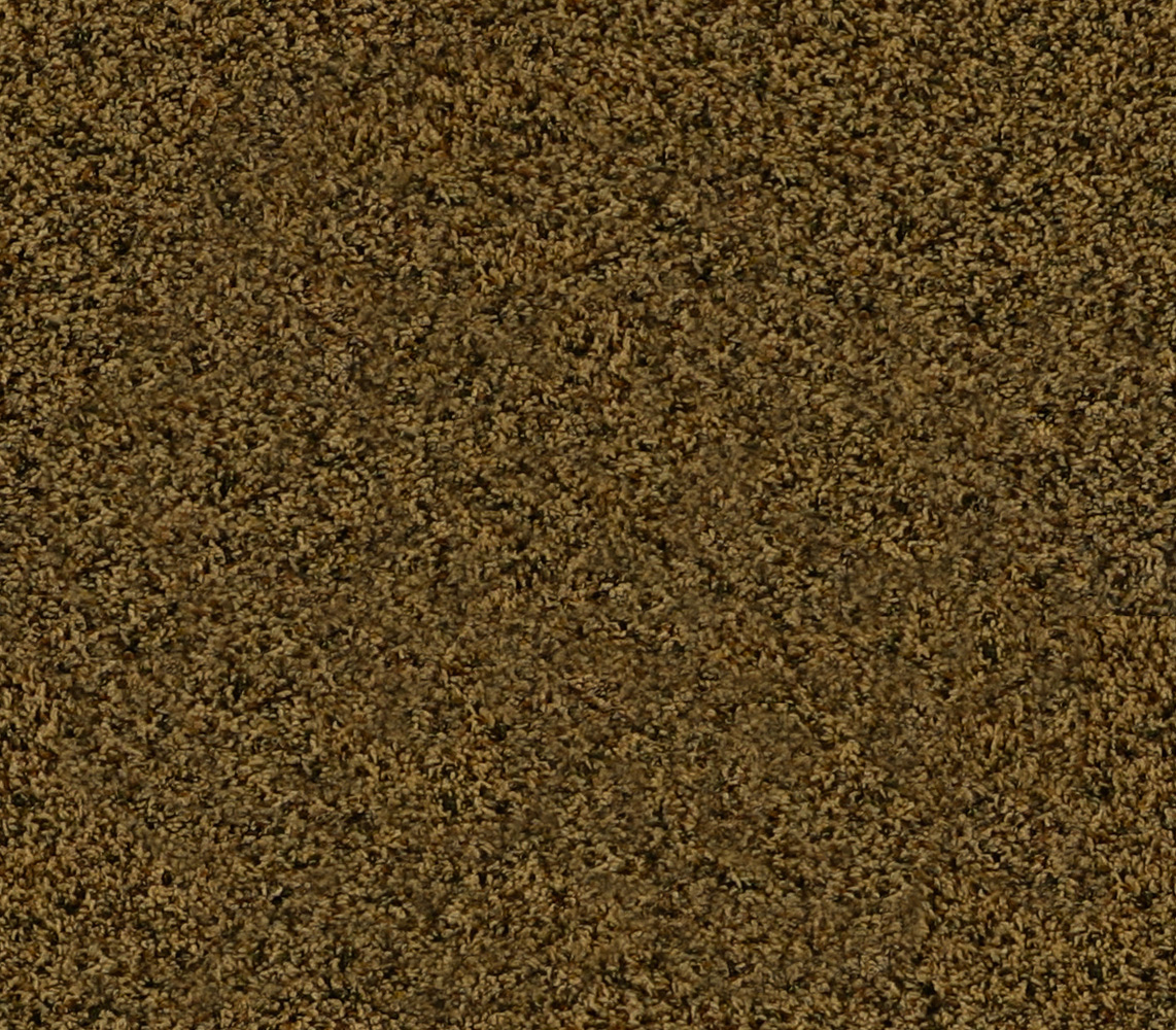 Fortitude by beaulieubliss stainmaster carpet cut pile fortitude by beaulieu bliss baanklon Choice Image