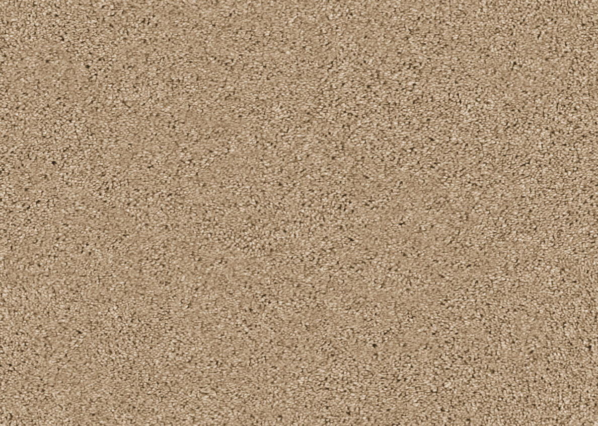 Cherish by beaulieubliss carpet residential texture cut cherish by beaulieu bliss baanklon Choice Image