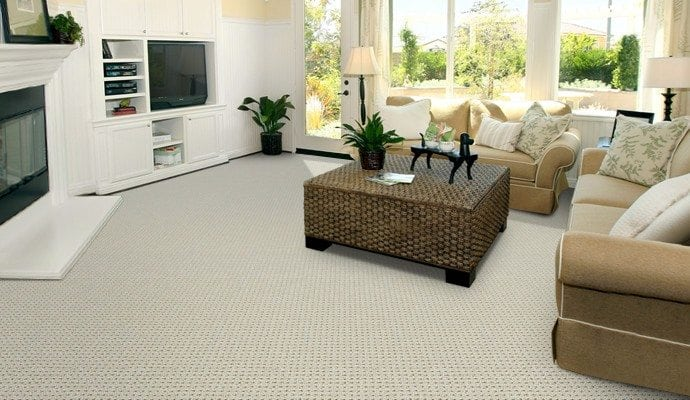 Buy Woodford By Godfrey Hirst Polyester Carpets In Dalton