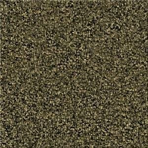 Buy The Answer TL By Beaulieu Hollytex Nylon Carpets In Dalton