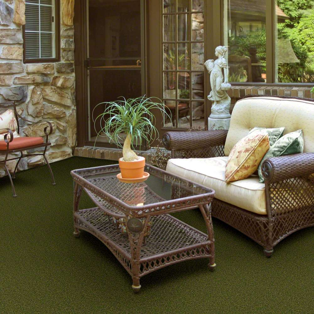 Indoor outdoor carpets in dalton park central by shaw philadelphia main st baanklon Choice Image