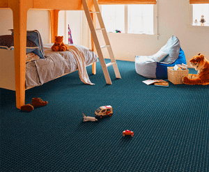 Pet Friendly Carpet for Dogs and Cats