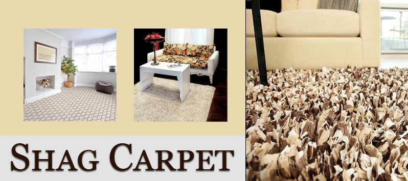 Shag Carpet Specials